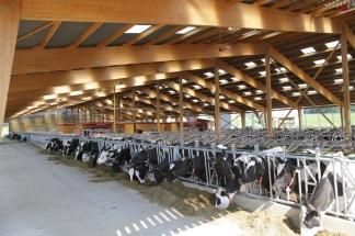 Bâtiments d'élevages