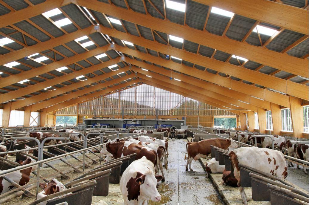 Construction Bâtiments Agricoles GAEC du THILLOT